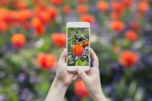 ways to help moms spend less time on their phone
