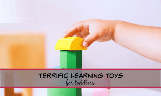 Terrific learning toys for toddlers!